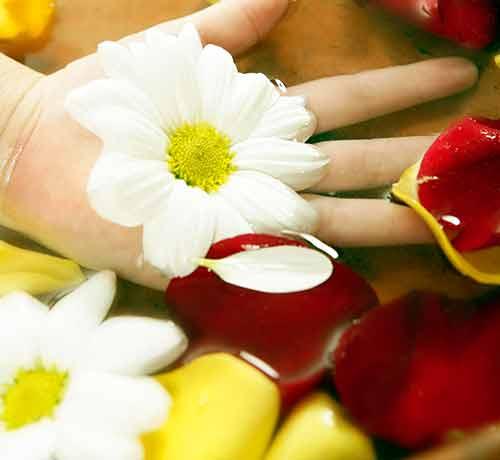 フローラルな花の香り