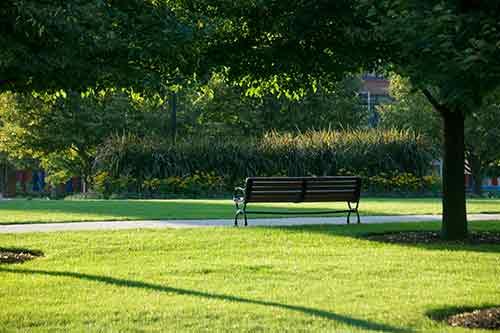 朝デートにおすすめな朝の公園