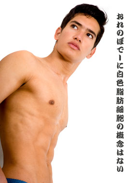 体型がガッチリしている男性