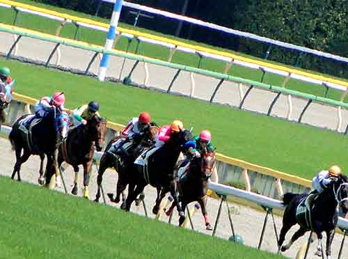 ギャンブル男が集まる競馬場