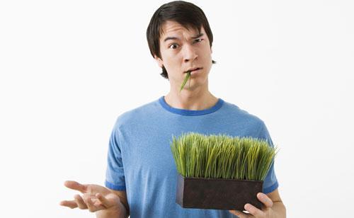 草食系より迷惑男!植物系男子