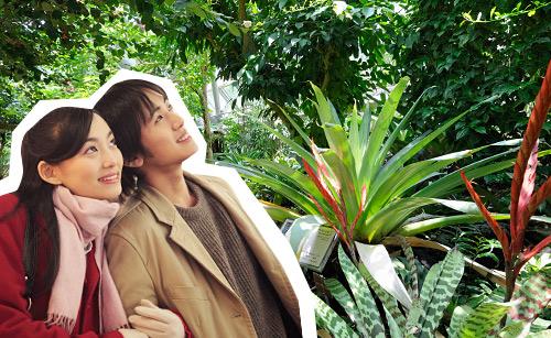 植物園でデート